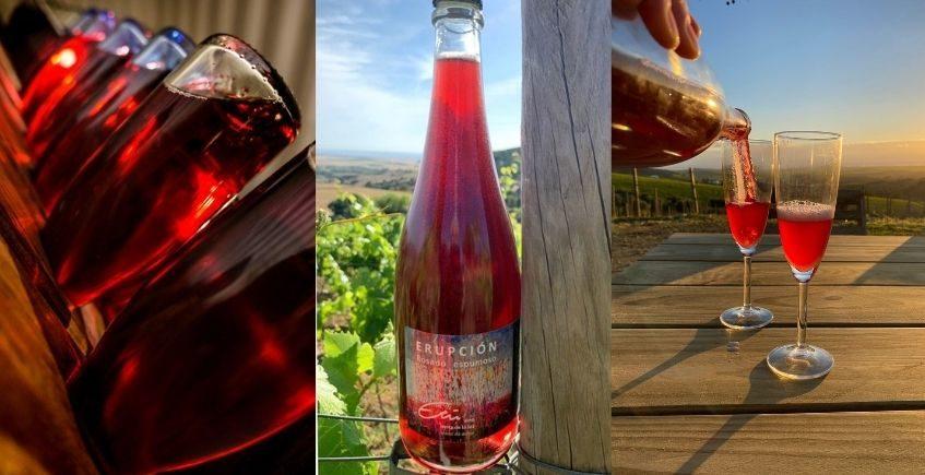 """Nace el """"cava de Vejer"""", un vino rosado de bodegas Etú"""