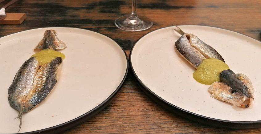 sardinas 847