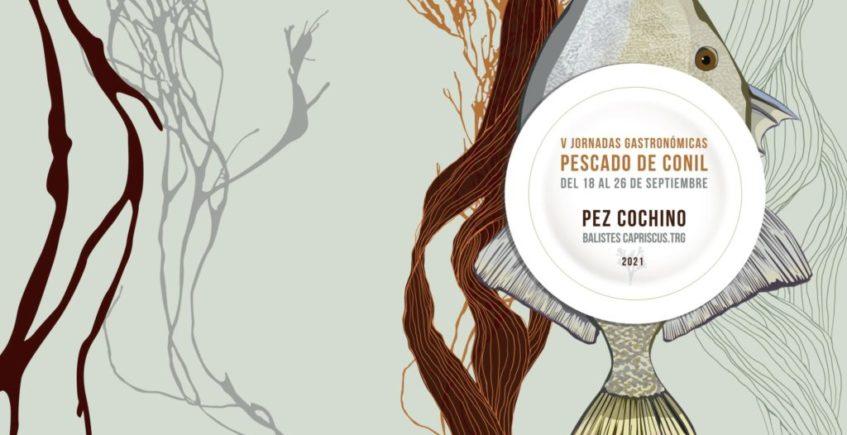 V Jornadas gastronómicas del pescado de Conil dedicadas al pez cochino