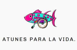 El cocinero Angel León apadrina un proyecto de Cáritas de Jerez para financiar tratamientos de niños con daño neurológico