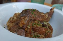 El arroz con conejo y setas de Avanico